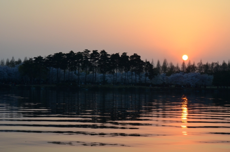Sunset at Lake Park, Ilsan